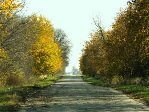 WLisbon_roadbychurch